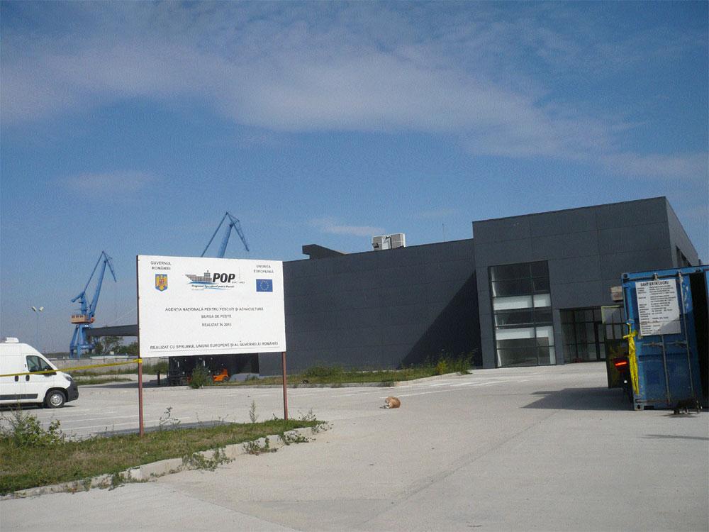 Bursa de peşte de la Tulcea este funcţională