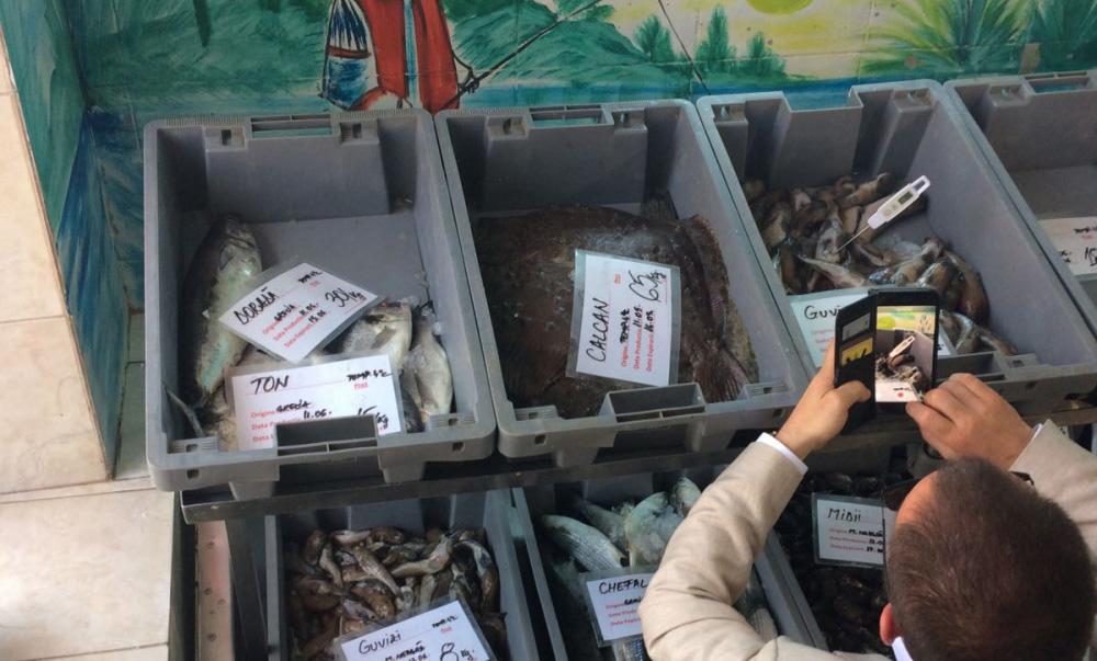 Controale la unităţile din sectorul peştelui şi produselor de pescuit