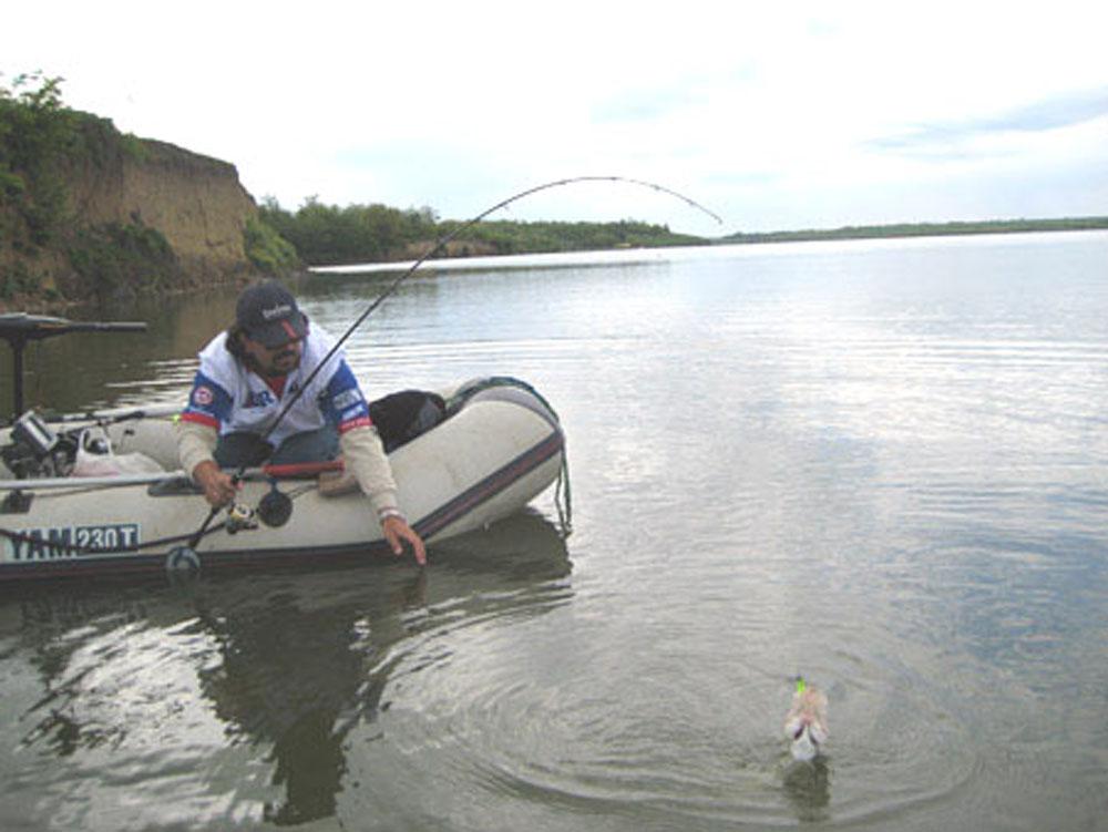 Lovitură dură pentru administratorul resursei piscicole din Deltă