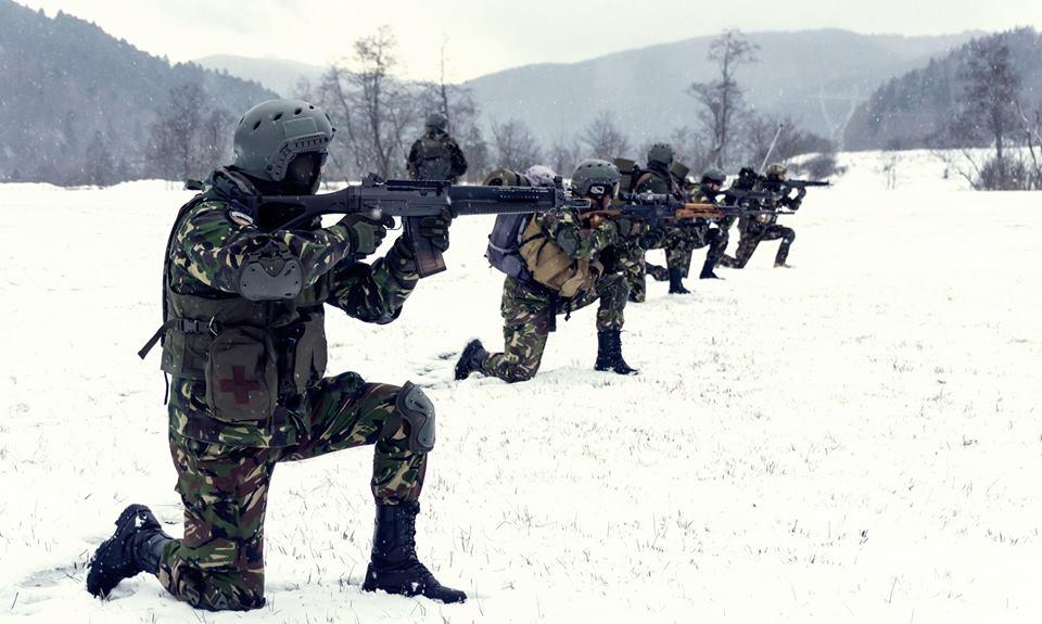 Infanteria Marină ia cu asalt municipiul Tulcea