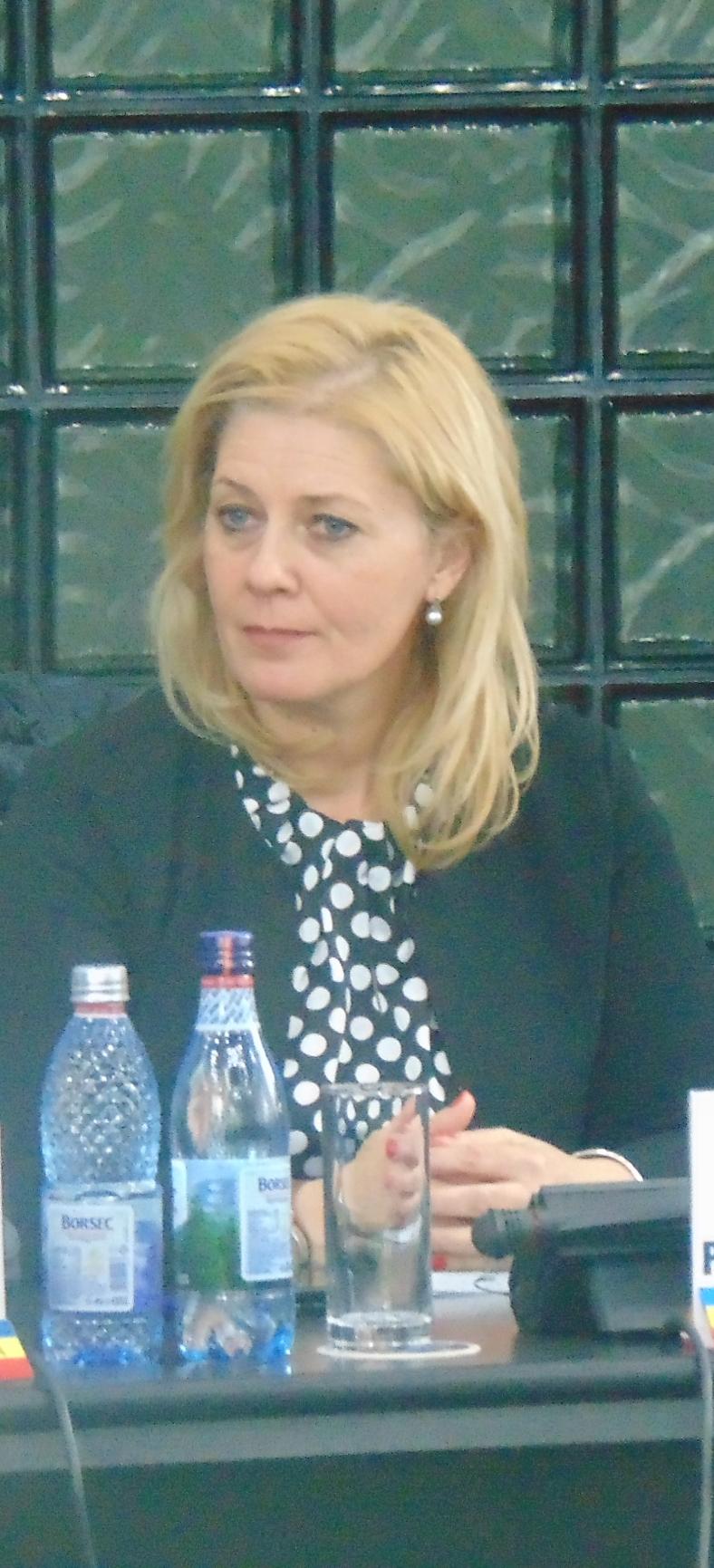 Faleza municipiului, la un pas de transfer către Consiliul Judeţean