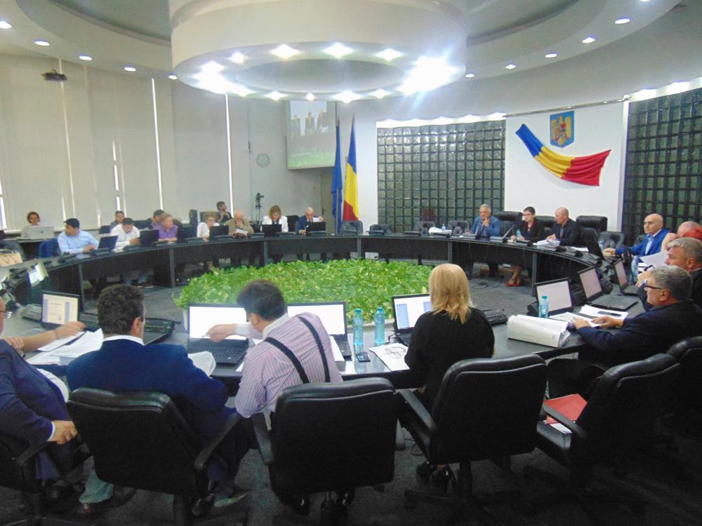 Consilierii locali au aprobat în unanimitate transferul falezei către Consiliul Judeţean
