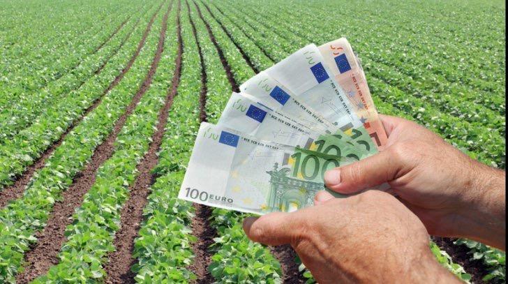 În cazul societăţilor agricole cărora le-au expirat contractele de concesiune pe zeci de mii de hectare din Deltă