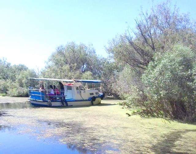 Peste 3000 de turişti au ales să viziteze Delta Dunării de Paşti