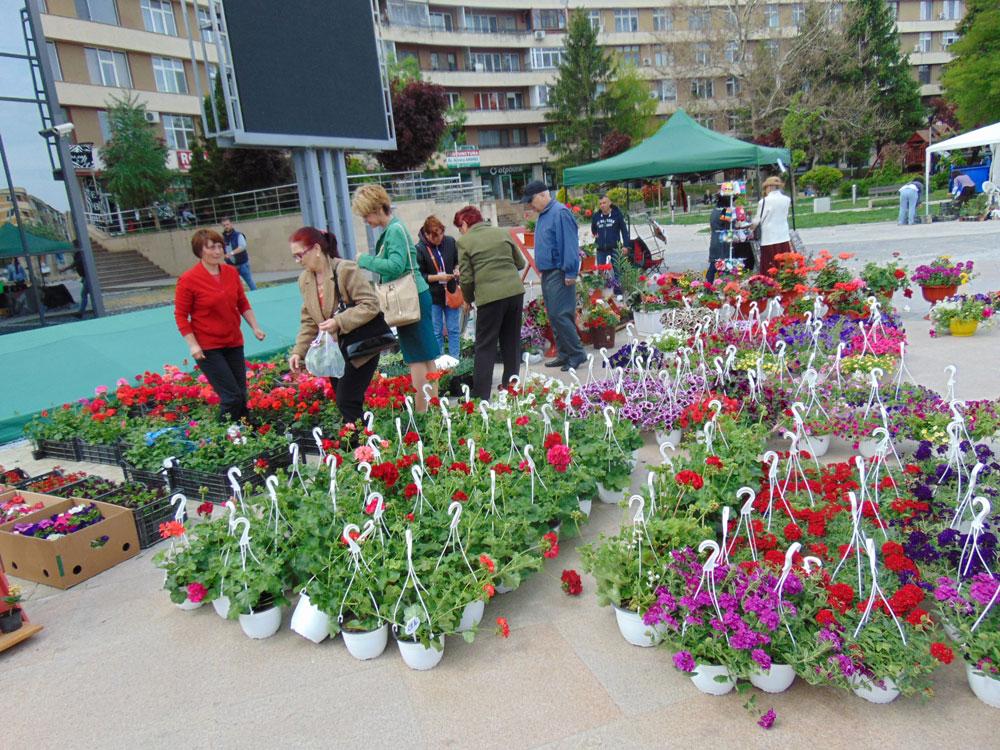 Flori de primăvară, muzică şi voie bună, în Piaţa Civică