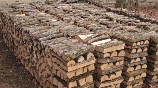 Veşti pentru tulceni: Direcţia Silvică a scos la vânzare lemnul din depozite