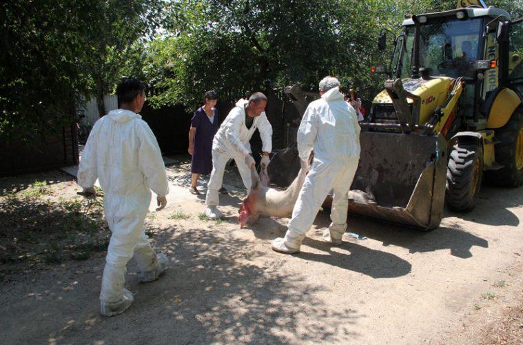 În cursul acestei săptămâni, la Tulcea: plăţi aferente despăgubirilor pentru 1000 de dosare care vizează gospodăriile populaţiei