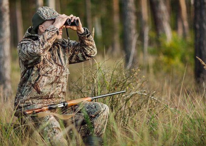 Vânătoarea mistreţilor şi şacalilor din deltă începe săptămâna viitoare
