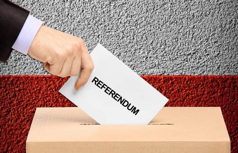 Două zile până la referendum. Cartel Alfa susţine familia tradiţională