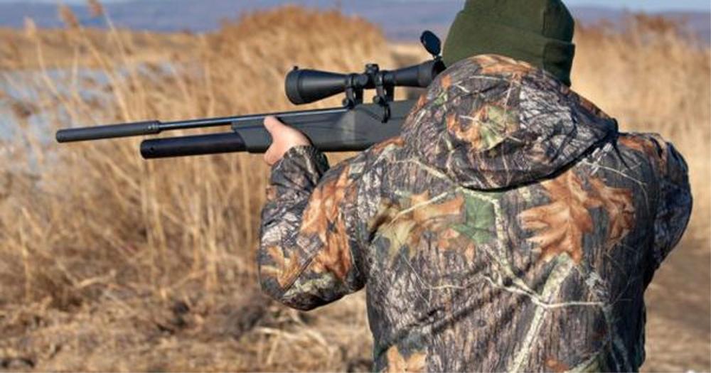 Vânătoarea mistreţilor şi şacalilor din Delta Dunării ar putea începe mâine