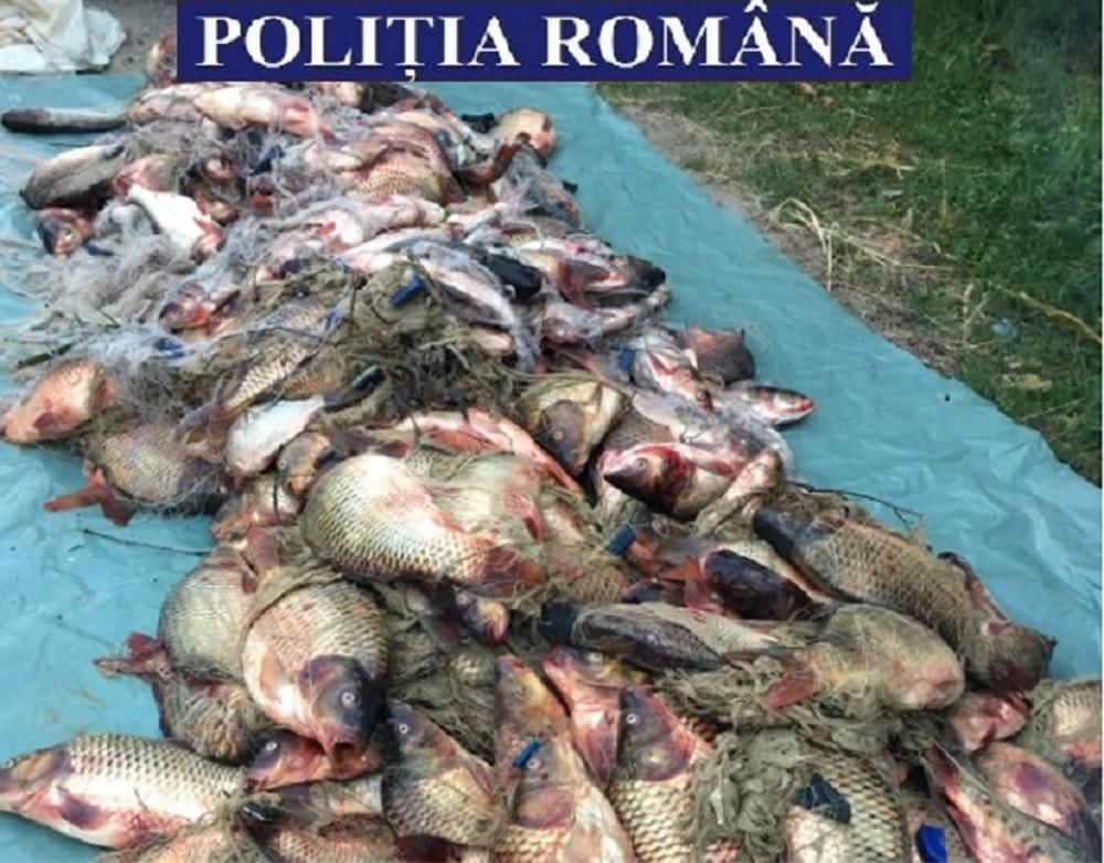 Peste două tone de peşte din deltă confiscate anul trecut de poliţiştii tulceni