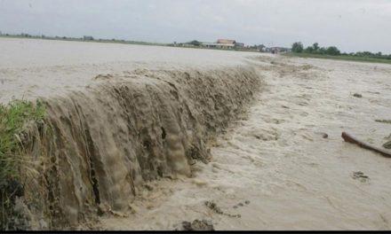 Cod galben de inundaţii pe Dunăre: primăriile, în stare de alertă