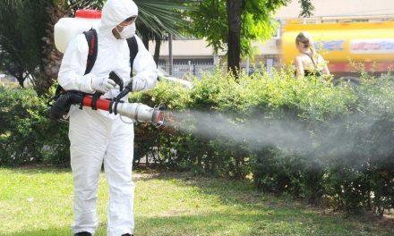 Invazia ţânţarilor: a început a treia dezinsecţie în municipiu
