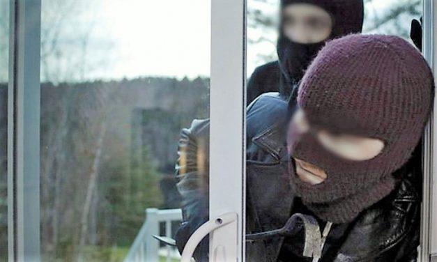 Patru minori surprinşi de jandarmii tulceni la furat