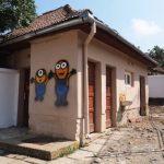 Bani doar pentru patru din cele 54 de şcoli tulcene cu toalete în curte