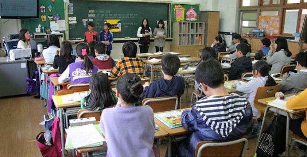 Cei mai buni elevi tulceni vor fi răsplătiţi cu burse de Consiliul Judeţean