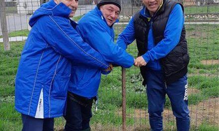 Nu îl mai vor pe Popa la şefia ALDE. Vicele Badea ar intra în competiţie