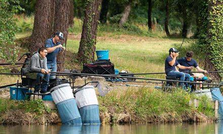 Taxa pentru pescuit sportiv revine
