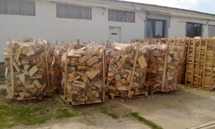 Lemnul de foc se vinde online în Tulcea: Direcţia Silvică a lansat în premieră naţională o aplicaţie