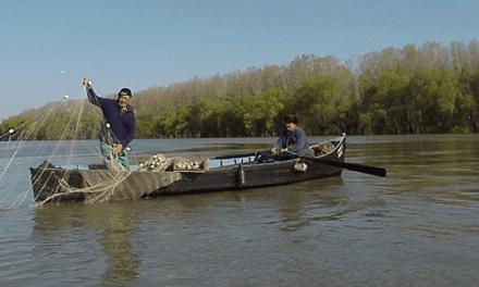 Permisele de pescuit pot fi solicitate la sediul Comisariatelor Regionale ale ARBDD