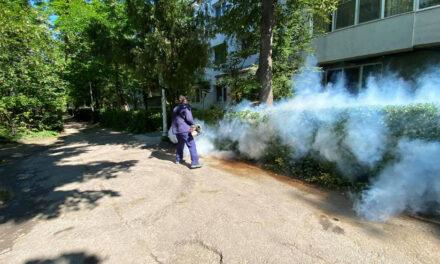 Azi începe dezinsecţia în municipiu