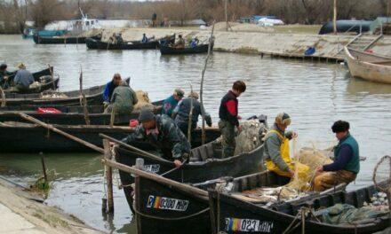 Pescarii comerciali din Deltă se plâng de capturile slabe de peşte