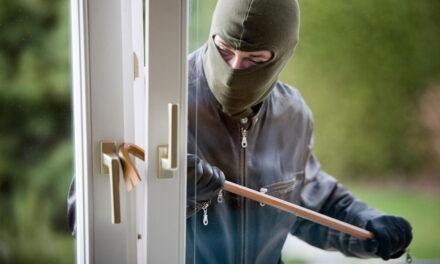 Aproape 130 de case sparte de hoţi în Tulcea de la începutul anului