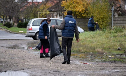 Beneficiarii de ajutor social din Topolog, puşi la muncă de Primărie