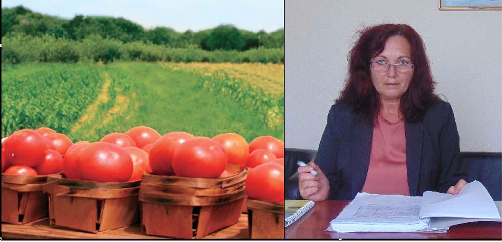 Judeţul Tulcea are peste 340 de operatori în agricultura ecologică