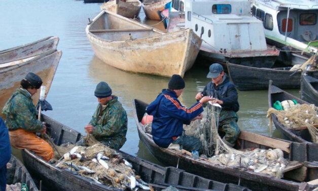 Operatorii turistici din Deltă vor să cumpere peşte direct de la localnici