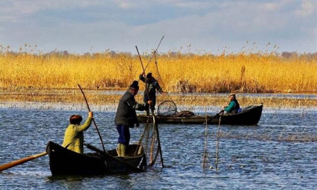 Pescarii comerciali vor introducerea unei taxe de pescuit sportiv în Deltă