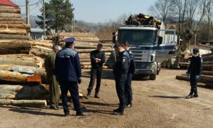 Şase infracţiuni silvice înregistrate anul trecut, în judeţul Tulcea