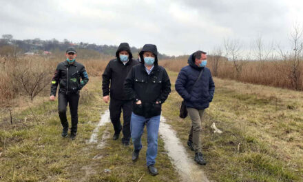 Împăduriri de sezon în municipiu: circa 150 de sălcii plantate în zona Zaghen