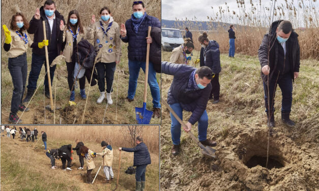 O sută de puieţi de salcie, plantaţi de voluntari în zona Zaghen