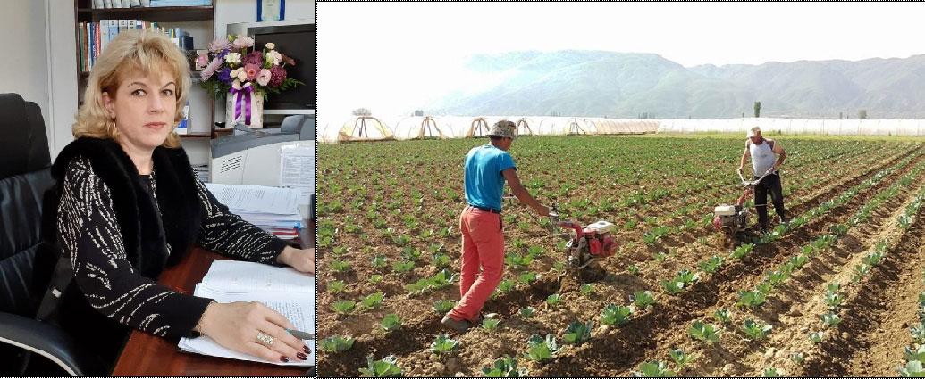 Recensământ general agricol cu dificultăţi: tulcenii, reticenţi să furnizeze date recenzorilor