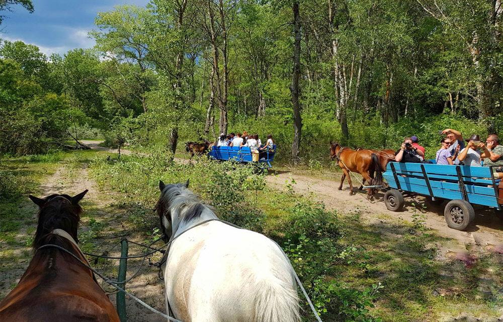 Peste 900 de vizitatori au ales ca destinaţie Delta Dunării