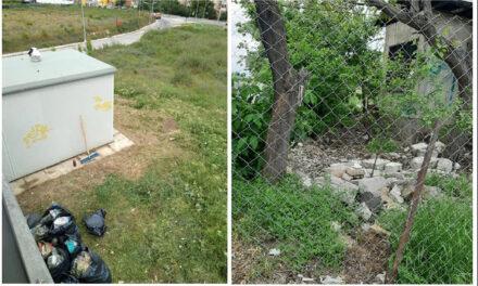 Tulcenii, somaţi să îşi strângă gunoiul de pe proprietăţi