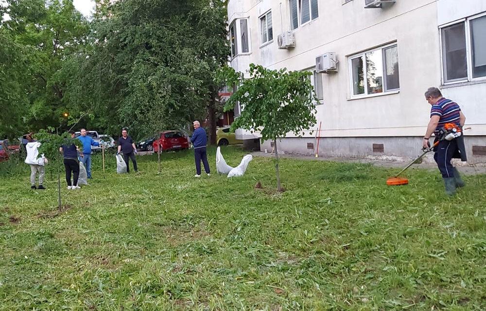 Tulcenii care locuiesc la bloc vor plăti întreţinerea spaţiilor verzi