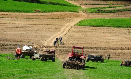 Unele primării din deltă refuză să renatureze terenurile administrate pentru proiectele de reconstrucţie ecologică ale ARBDD